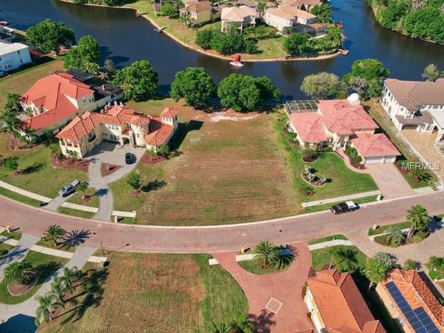17944 Cachet Isle Dr Drive, Tampa, FL 33647 (MLS #U7854708) :: The Duncan Duo Team