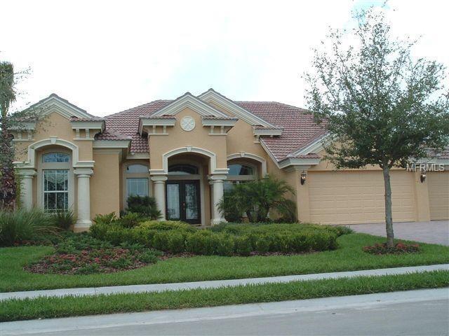 1320 El Pardo Drive, Trinity, FL 34655 (MLS #U8004346) :: Delgado Home Team at Keller Williams