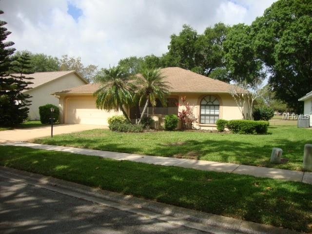 1288 Gillespie Drive, Palm Harbor, FL 34684 (MLS #U8004814) :: O'Connor Homes