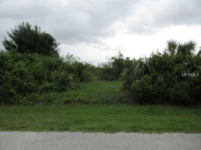 14395 Aurella Circle, Port Charlotte, FL 33981 (MLS #U8006983) :: The BRC Group, LLC