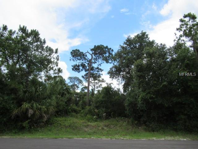 Troost Street, North Port, FL 34288 (MLS #U8007480) :: Team Pepka