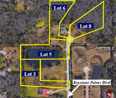Address Not Published, Tarpon Springs, FL 34688 (MLS #U8011938) :: Medway Realty