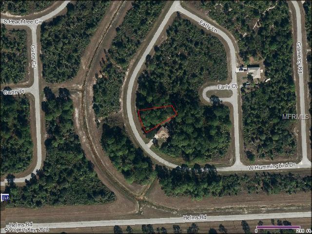 5016 Hummingbird Drive, Labelle, FL 33935 (MLS #U8013284) :: The Duncan Duo Team