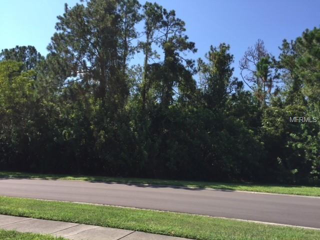 Post Rock Court, Tarpon Springs, FL 34688 (MLS #U8013988) :: Mark and Joni Coulter | Better Homes and Gardens