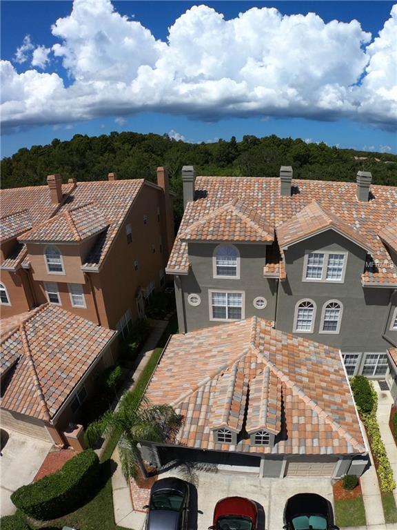 1670 Arabian Lane, Palm Harbor, FL 34685 (MLS #U8016512) :: Burwell Real Estate