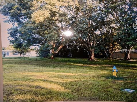 Bluebird Drive, Holiday, FL 34690 (MLS #U8016824) :: Team Borham at Keller Williams Realty
