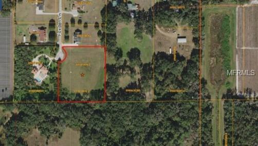 3202 Foxden Lane, Plant City, FL 33565 (MLS #U8017183) :: Griffin Group