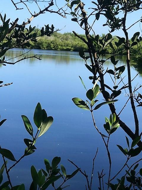 Sand Bay Drive Lot 24, Holiday, FL 34691 (MLS #U8018155) :: The Duncan Duo Team
