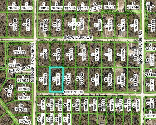 0 Sneeze Road, Weeki Wachee, FL 34614 (MLS #U8022366) :: GO Realty