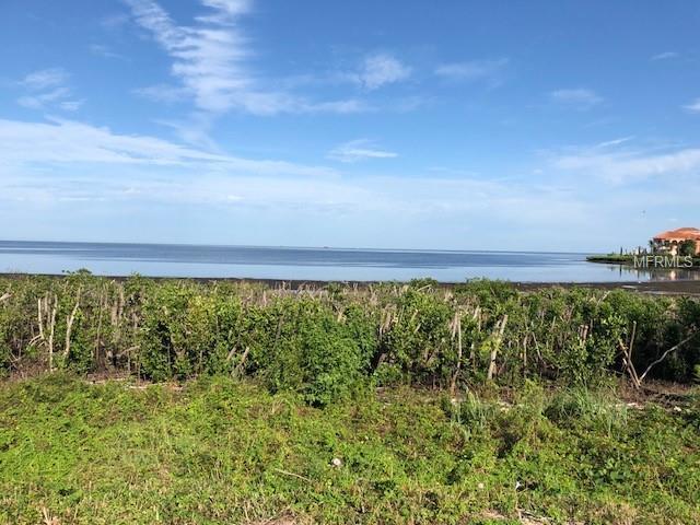 Harborpointe Drive, Port Richey, FL 34668 (MLS #U8022433) :: Griffin Group