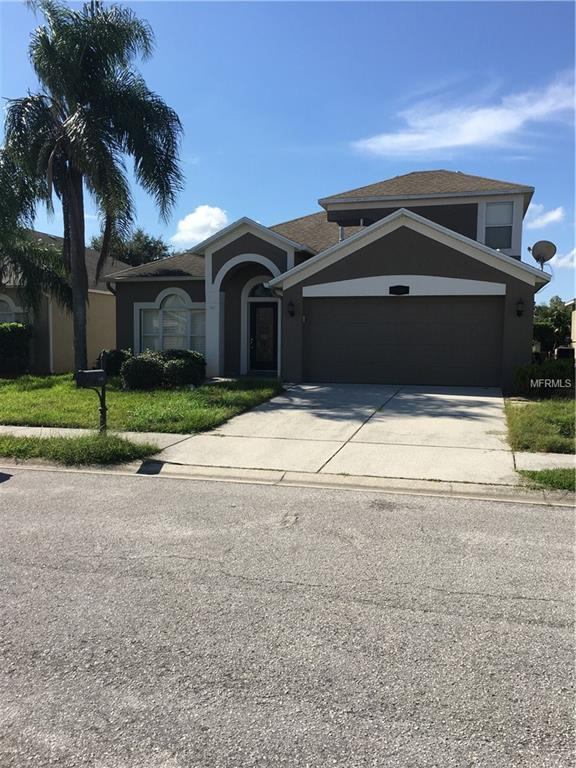1749 Lady Palm Court, Trinity, FL 34655 (MLS #U8024920) :: Jeff Borham & Associates at Keller Williams Realty