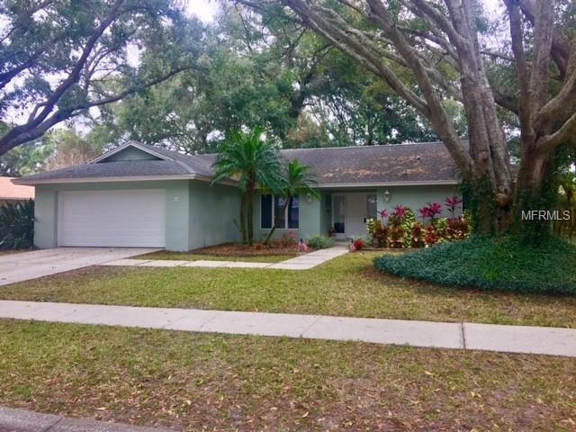 610 Sandy Hook Road, Palm Harbor, FL 34683 (MLS #U8030540) :: Delgado Home Team at Keller Williams