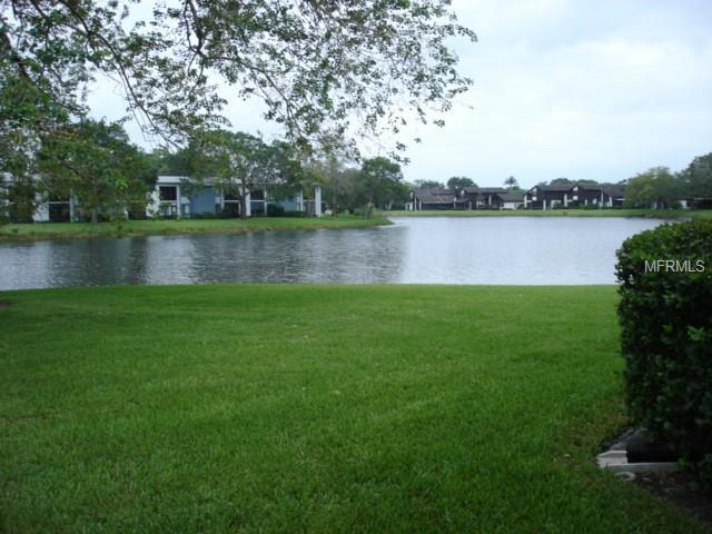151 Lakeview Way, Oldsmar, FL 34677 (MLS #U8031528) :: KELLER WILLIAMS CLASSIC VI