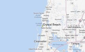 805 Illinois Avenue, Palm Harbor, FL 34683 (MLS #U8033916) :: The Duncan Duo Team