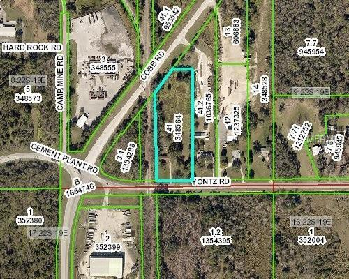 19043 Yontz Road, Brooksville, FL 34601 (MLS #U8035356) :: Griffin Group