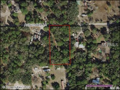 Auburndale Lane, Spring Hill, FL 34610 (MLS #U8039082) :: Homepride Realty Services