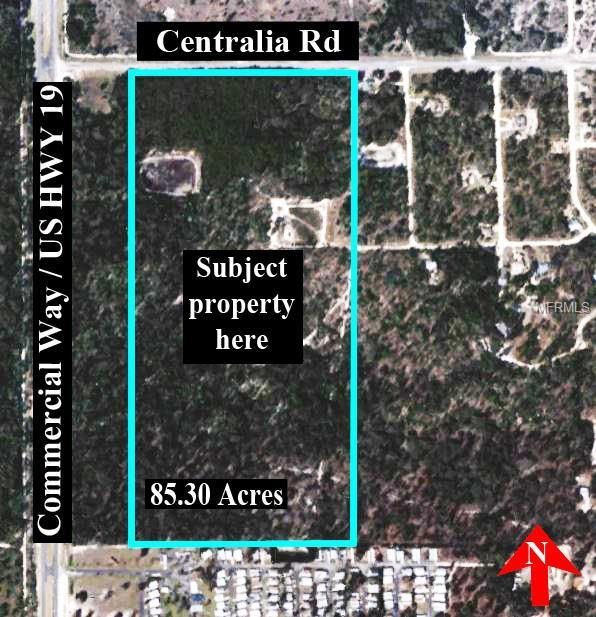 Centralia Road, Weeki Wachee, FL 34614 (MLS #U8043386) :: The Duncan Duo Team