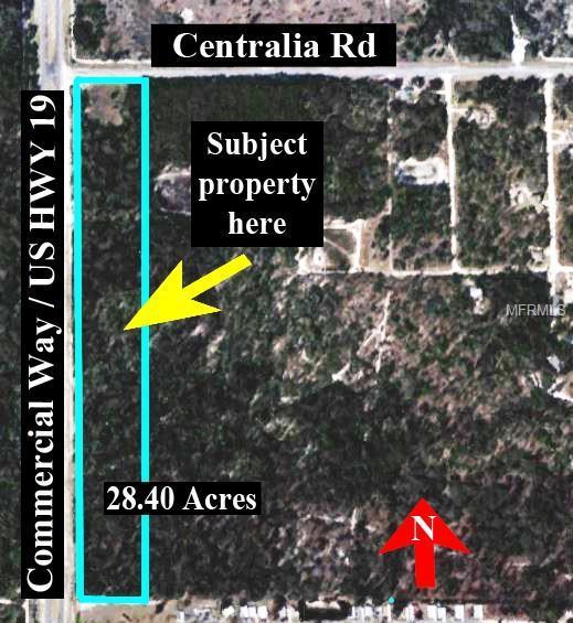 10202 Centralia Road, Weeki Wachee, FL 34614 (MLS #U8043390) :: Godwin Realty Group