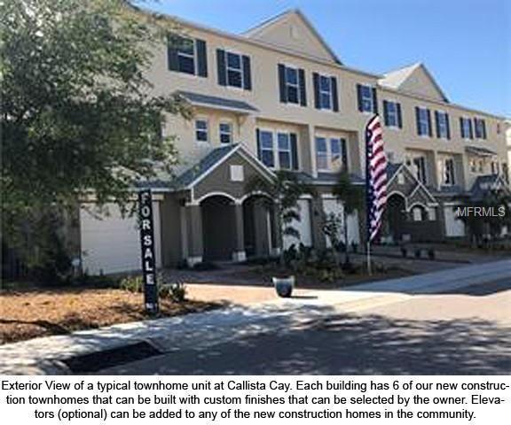 819 Callista Cay Loop, Tarpon Springs, FL 34689 (MLS #U8043550) :: Advanta Realty