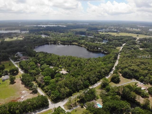 Lutz Lake Fern Road, Odessa, FL 33556 (MLS #U8043651) :: Burwell Real Estate