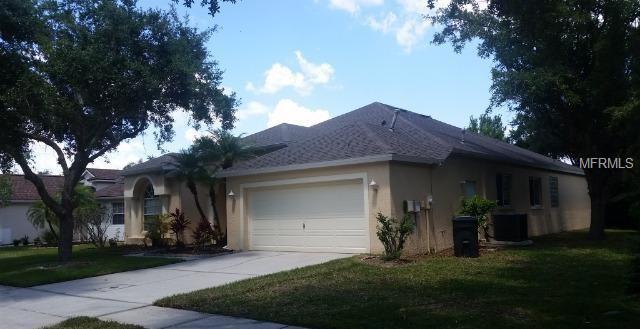 19117 Dove Creek Drive, Tampa, FL 33647 (MLS #U8044527) :: Team Bohannon Keller Williams, Tampa Properties