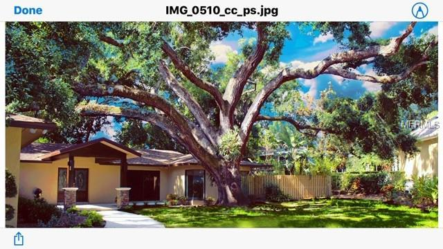 409 Roebling Road S, Belleair, FL 33756 (MLS #U8045524) :: Burwell Real Estate