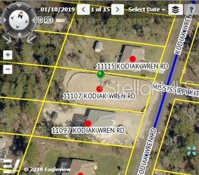 11107 Kodiak Wren, Weeki Wachee, FL 34614 (MLS #U8049618) :: Premium Properties Real Estate Services