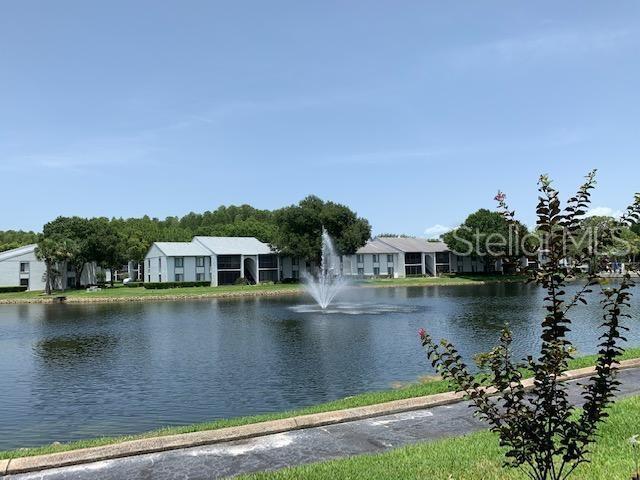 1127 Pine Ridge Circle W B2, Tarpon Springs, FL 34688 (MLS #U8050286) :: Team 54