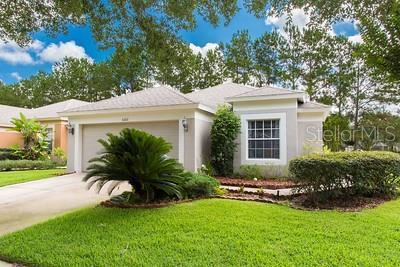 5202 Gato Del Sol Cir, Wesley Chapel, FL 33544 (MLS #U8050751) :: NewHomePrograms.com LLC