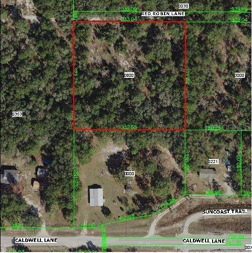 16704 Red Robin Lane, Spring Hill, FL 34610 (MLS #U8051731) :: Jeff Borham & Associates at Keller Williams Realty