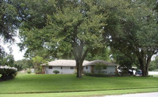 2322 Meadowbrook Drive, Lutz, FL 33558 (MLS #U8052327) :: Jeff Borham & Associates at Keller Williams Realty