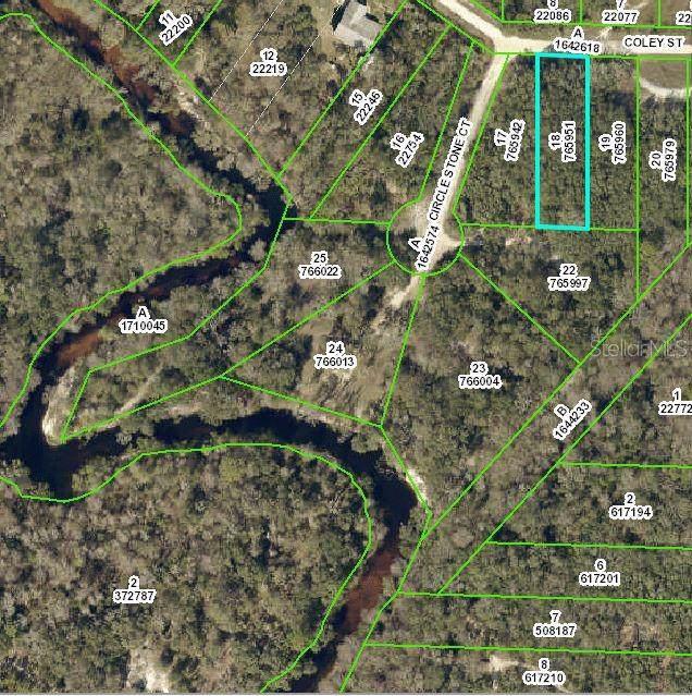 0 Coley Street, Webster, FL 33597 (MLS #U8055602) :: Cartwright Realty