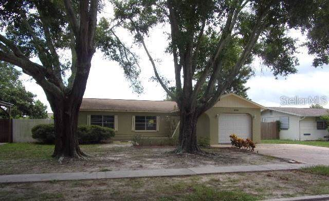 6201 13 Avenue, New Port Richey, FL 34653 (MLS #U8056027) :: The Duncan Duo Team