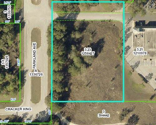 0 Parkland Avenue, Brooksville, FL 34602 (MLS #U8056076) :: Rabell Realty Group