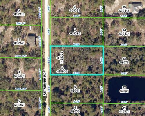 Retriever Rd Road, Brooksville, FL 34614 (MLS #U8056486) :: Lovitch Realty Group, LLC