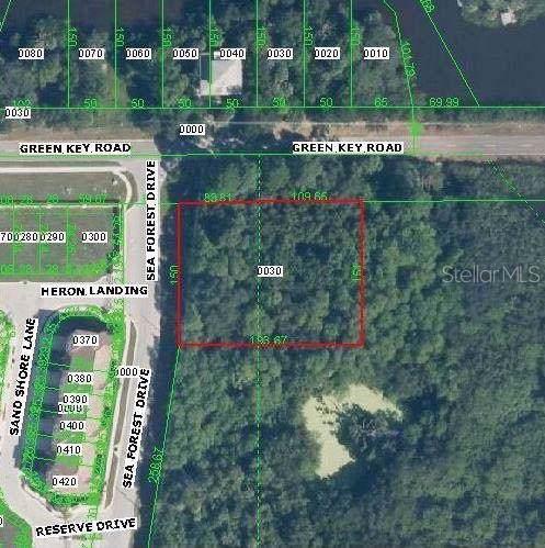 Green Key Road, New Port Richey, FL 34652 (MLS #U8058505) :: Griffin Group
