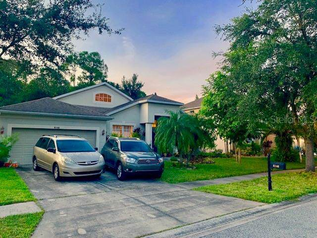 8146 Brinegar Circle, Tampa, FL 33647 (MLS #U8059140) :: Burwell Real Estate
