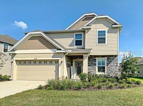 8036 Olive Brook Drive, Wesley Chapel, FL 33545 (MLS #U8060767) :: Baird Realty Group