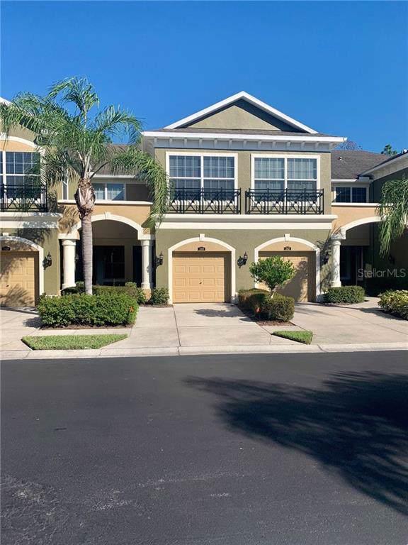 12610 Silverdale Street, Tampa, FL 33626 (MLS #U8062161) :: Cartwright Realty