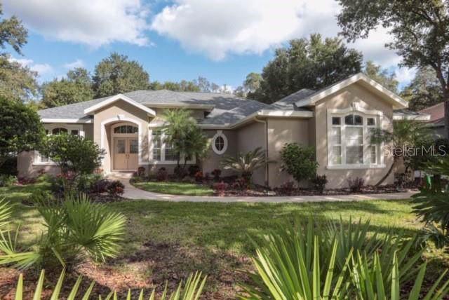 6016 Audubon Manor Boulevard, Lithia, FL 33547 (MLS #U8063157) :: The Brenda Wade Team