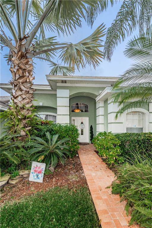 393 Knight Drive, Tarpon Springs, FL 34688 (MLS #U8065240) :: Team Borham at Keller Williams Realty