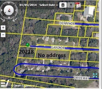20245 Ganz Drive, Brooksville, FL 34601 (MLS #U8065898) :: 54 Realty
