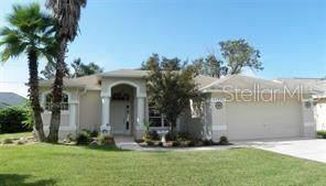 15448 Sonora Drive, Brooksville, FL 34604 (MLS #U8066285) :: The Light Team