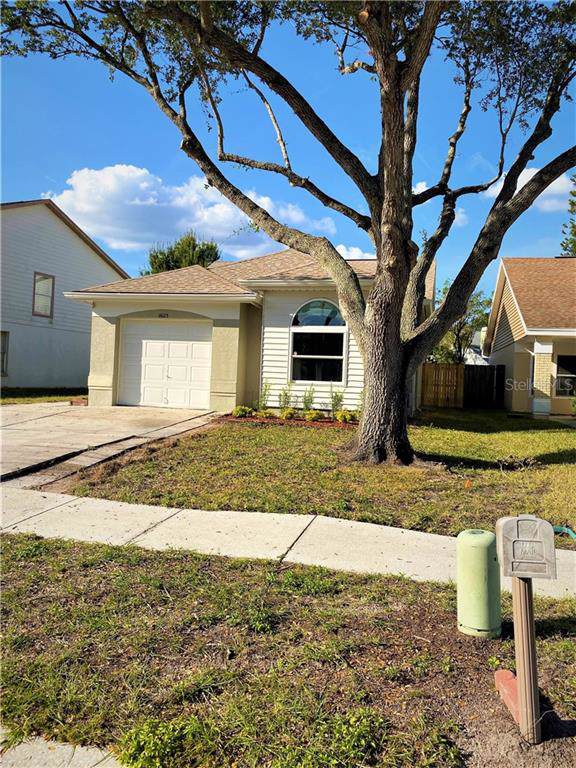 11623 Hidden Hollow Circle, Tampa, FL 33635 (MLS #U8066715) :: Lock & Key Realty