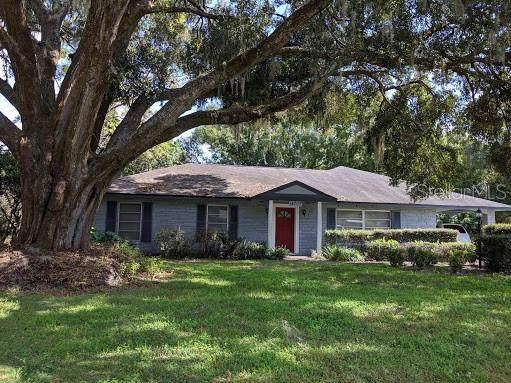 14707 N Boulevard, Tampa, FL 33613 (MLS #U8067369) :: Griffin Group