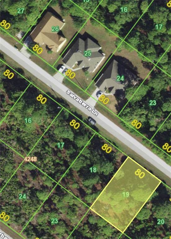14271 Salvatierra Lane, Port Charlotte, FL 33981 (MLS #U8067378) :: The Duncan Duo Team
