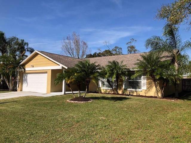 2837 Weston Terrace, Palm Harbor, FL 34685 (MLS #U8071650) :: Griffin Group