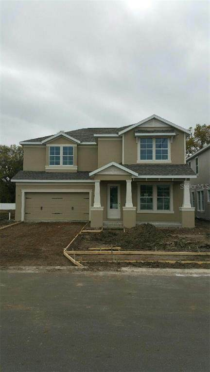 7103 Park Tree Drive, Tampa, FL 33625 (MLS #U8074690) :: The Nathan Bangs Group