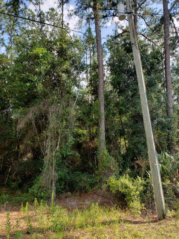 4108 E Fort Apache Place, Dunnellon, FL 34434 (MLS #U8074947) :: Team Borham at Keller Williams Realty