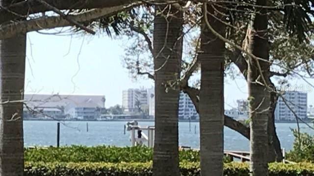473 North Carolina Avenue, Palm Harbor, FL 34683 (MLS #U8077659) :: Lockhart & Walseth Team, Realtors